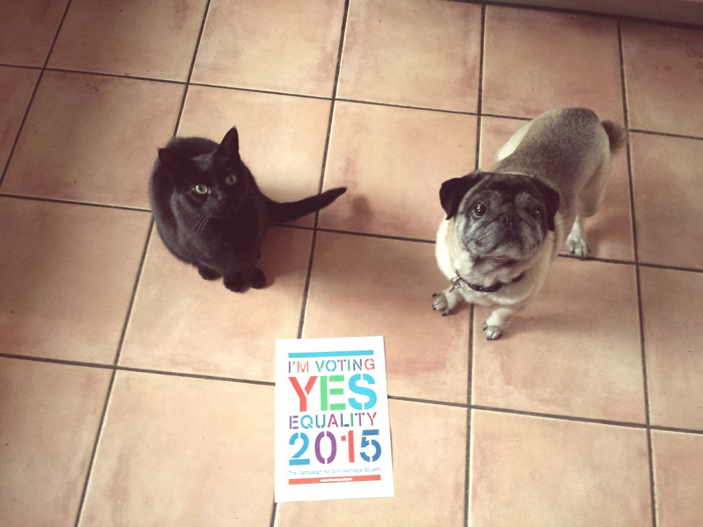 Dave-and-Fred-Yes-for-equality1