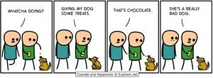 dogtreats