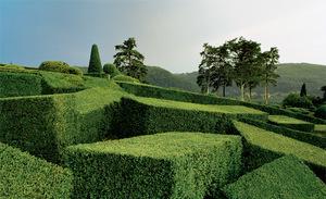 topiary-1