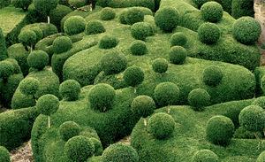 topiary-3