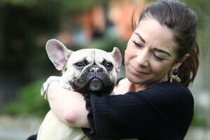 NO REPRO FEE 11/4/2017. Nicki Ladram with her French Bulldog Otto arrive at the Dylan Hotel Dublin for a doggy Brunch hosted by Pettura in the hotel.photo; Leon Farrell/Photocall Ireland.