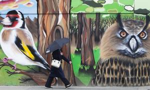 1487 Mural Dublin_90509158